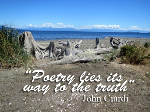 Poetry-and-truth