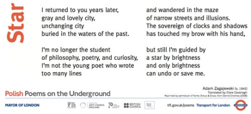 Polish_Poetry