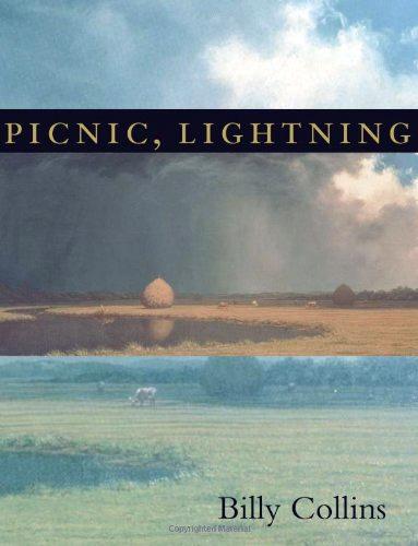 Picnic_Lightning