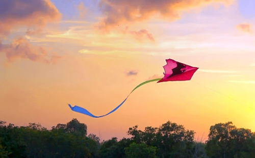 Affair of Kites