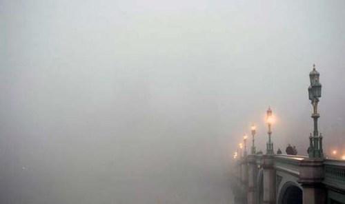 Fog-Amy-Clampitt