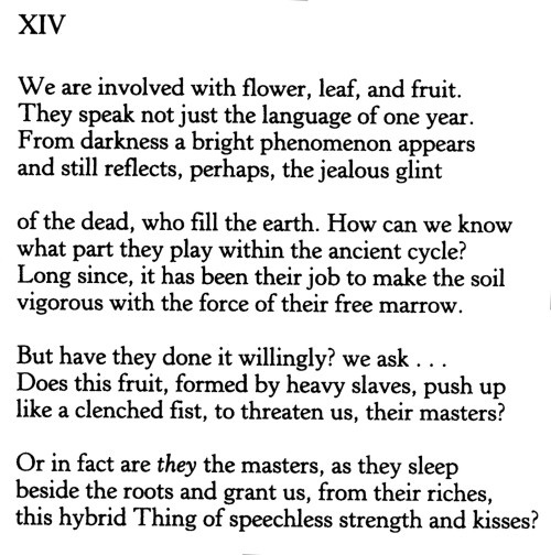 From The Sonnets To Orpheus.jpg